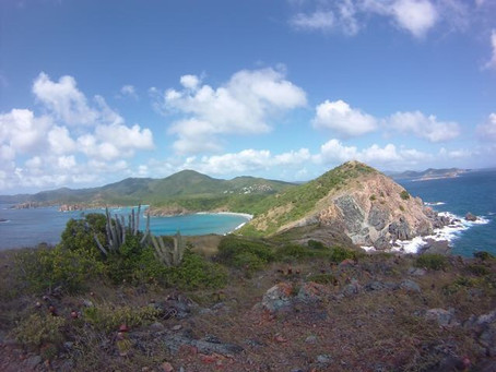 A Caribbean New Year's Adventure! Part I