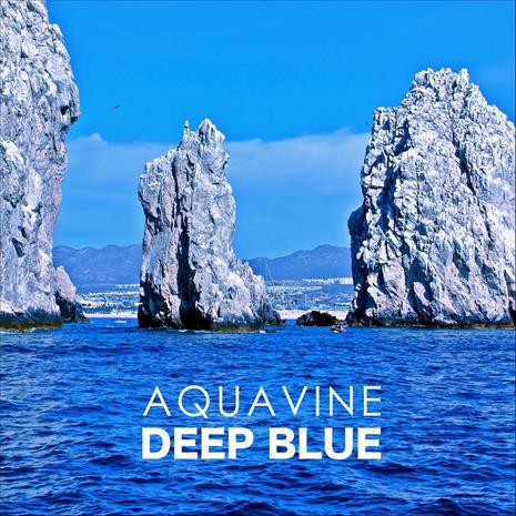 AQUAVINE - Deep Blue