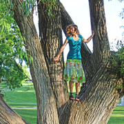 Adolescence, Tree.