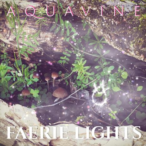 AQUAVINE - Faerie Lights
