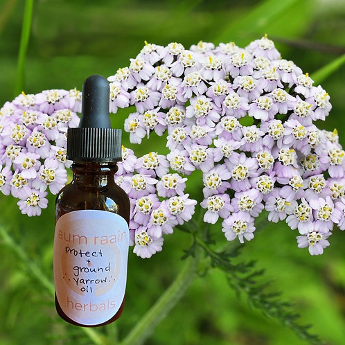 PROTECT ++ GROUND {{yarrow oil}}