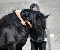Best friends with a horse