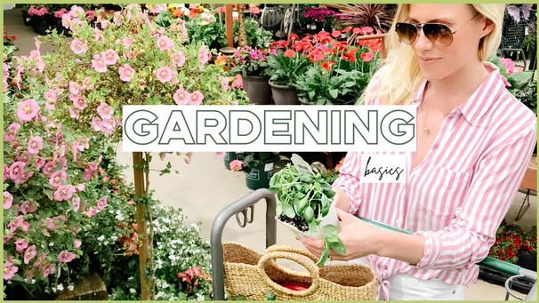 Beauty and Wellness: Tips For Starting A Vegetable Garden