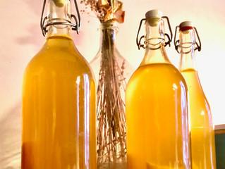 FERMENTATIONS boissons probiotiques & fruits et légumes lacto-fermentés