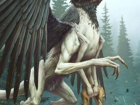 Hubby vs. Wifey Post #2: A predator and its prey