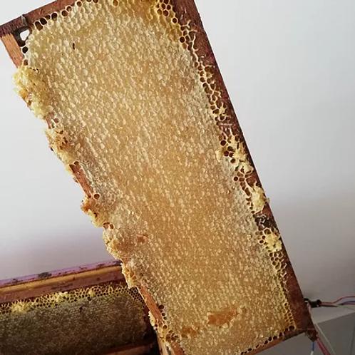 Rayon de miel de lavande