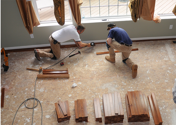 Contractor/Interior Designer/Builder