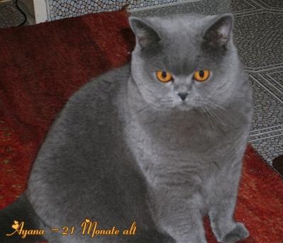 ayana_21_monate_alt1