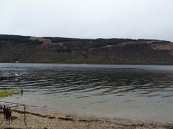 Loch Fyne Oyster farm