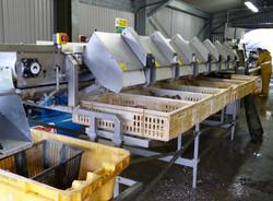 Loch Fyne Oysters Grading Machine