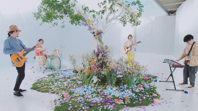 関取 花「新しい花」MV
