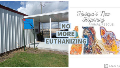 Haseya's New Beginnings Animal Rescue to take over Crowley Animal Shelter