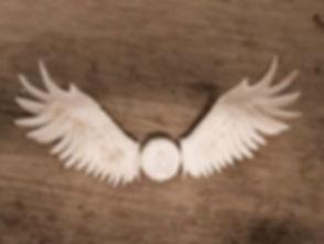 WingsF1_edited.jpg