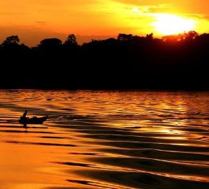 Amazônia: imprescindível para a transição energética