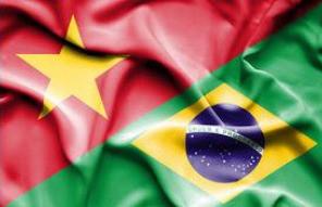 Vínculos de cooperação entre Brasil e Vietnã