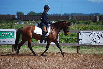 Dianna Epps Horse Training