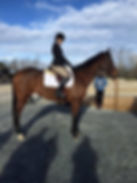 Show Jumping Trainer Dianna Epps