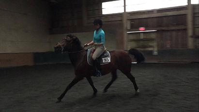 Dianna Epps Horse Traning