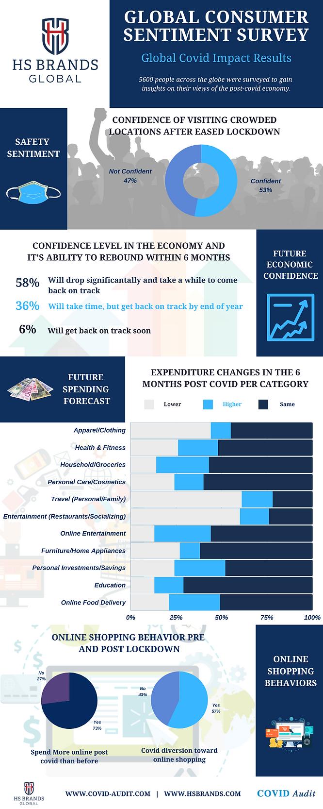 Global Consumer Sentiment Survey.png