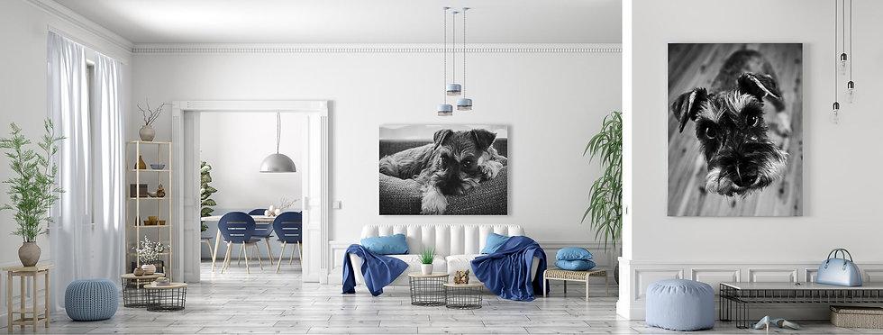 Gypsie Living Room design-Web.jpg