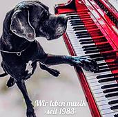 musikschule martens.png