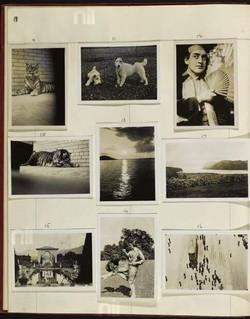 Free Lance 1934-5