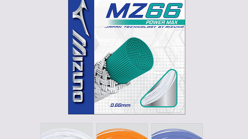 MZ 66 Power Max (Box of 10)
