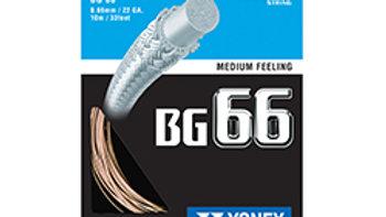 BG66-PLTN GOLD