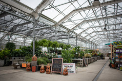 Madison Klein's Floral & Greenhouses