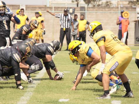 Em fim de semana recheado de touchdowns, Leões e Tubarões vencem