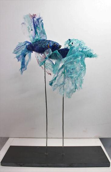'Blue Siamese Fighting Fish'