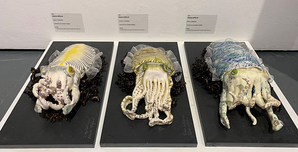 'Cuttlefish' -Mall Galleries.JPG