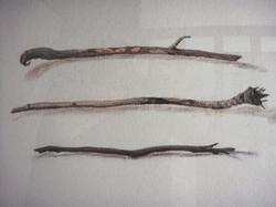 'Twigs'