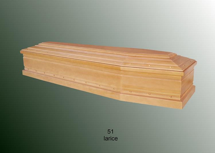51 larice.jpg