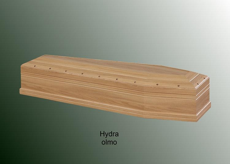 Hydra olmo.jpg