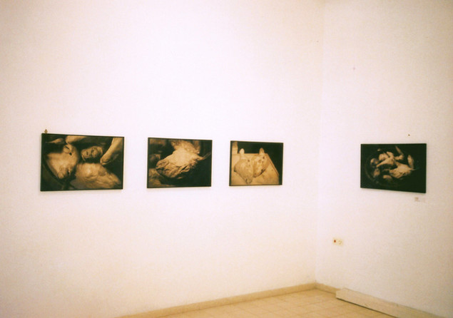 פלסטינ(ה), אמנות נשים מפלסטין, אוצרת טל בן צבי, אוקטובר 1998