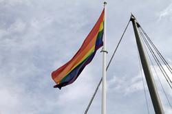 Etihad rainbow flag raising 2016  (13).JPG