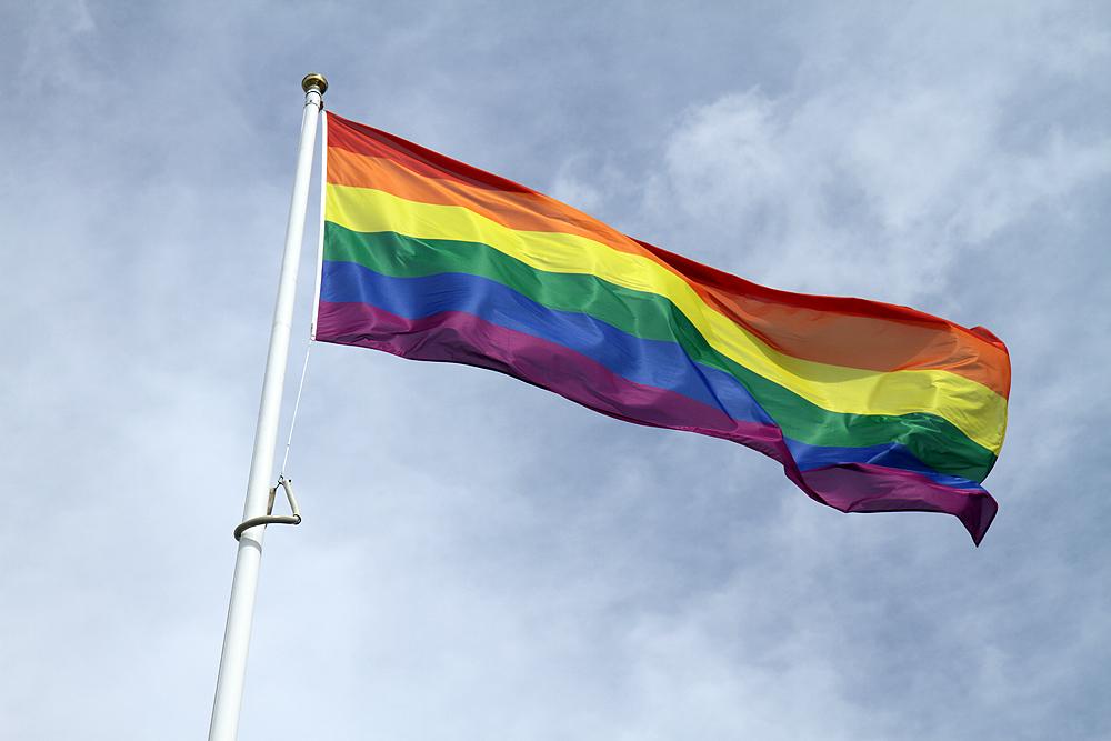 Etihad rainbow flag raising 2016  (14).JPG