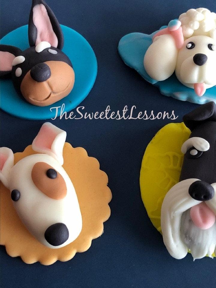 Adult Cake or Cupcake Decorating Classes