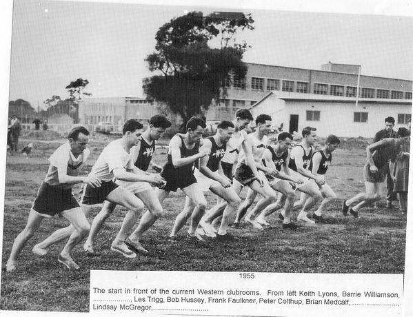 1955 start WD.jpeg