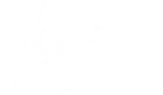 aev logo White.png