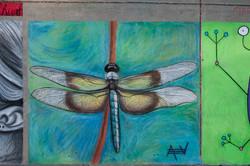 2012 Bev's Dragonfly Finished