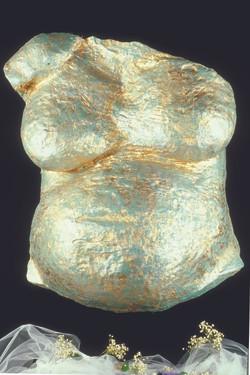 Golden belly cast