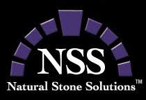 nss logo.jpg