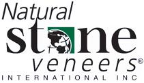 nsvi logo.png