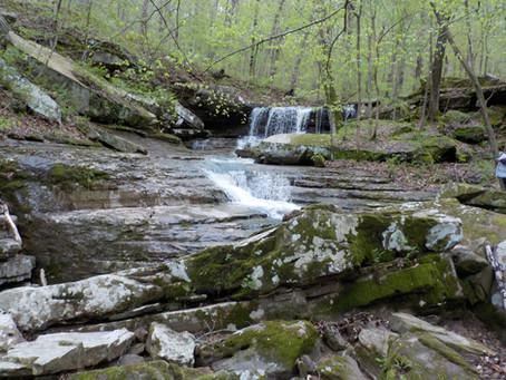 Forest Service Misdeeds on Shawnee National Forest
