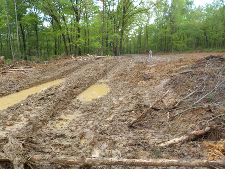 The Shawnee Faces New Environmental Threats as a Hard Fought Moratorium on Logging Ends