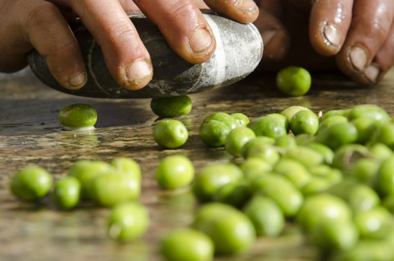 Olive premute