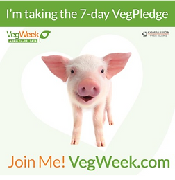 Join Me for VegWeek!