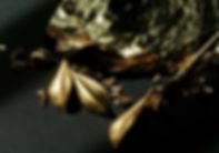 Blattgold 2 XS.jpg